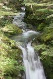 De Stroom van de berg, Nieuw Zeeland Stock Fotografie