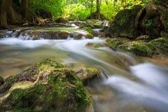 De stroom van de berg onder de bemoste stenen Stock Foto