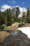 De Stroom van de Berg van Colorado Royalty-vrije Stock Foto's
