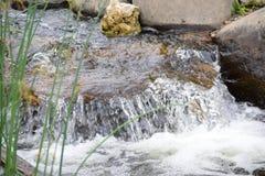 De stroom van de de zomerrivier stock afbeelding