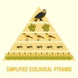 De stroom van de ecosysteemenergie stock illustratie