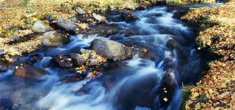 De stroom van de herfst royalty-vrije stock afbeeldingen