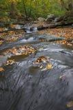 De Stroom van de herfst Stock Afbeelding