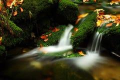 De stroom van de herfst in Reuzebergen Stock Afbeelding