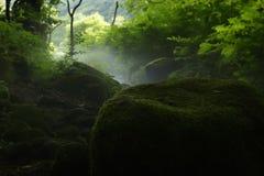 De stroom van de Kitanizawaberg Stock Foto