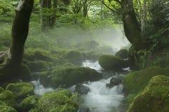 De stroom van de Kitanizawaberg Stock Afbeeldingen