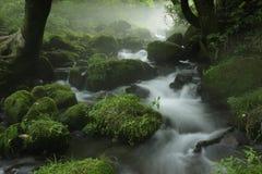 De stroom van de Kitanizawaberg Stock Afbeelding