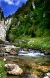 De stroom van de rivier stock fotografie