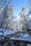 De stroom van de rivier in de winter royalty-vrije stock foto