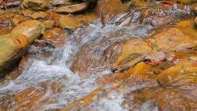 De stroom van een bergrivier over rotsen stock footage