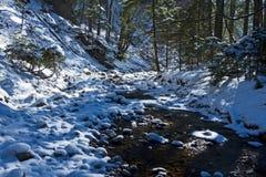 De stroom van het hoogland Stock Fotografie