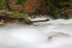 De stroom van het water Royalty-vrije Stock Afbeeldingen