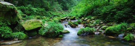 De stroom van het water stock foto