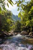 De stroom van het watervalwater in rotsen met groene bossen stock foto