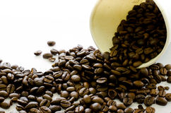 De stroom van koffiebonen van Witboekkop op witte achtergrond Stock Fotografie
