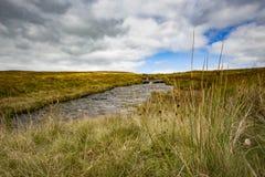 De stroom van meningsofa in de Brecon-Bakens in Wales stock foto