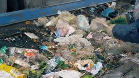 De stroom van vuilnis wordt door een installatiearbeider die wordt gesorteerd Het recyclingsinstallatie van het afval stock footage