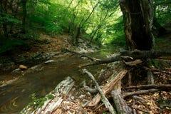 De stroomlandschap van de berg royalty-vrije stock foto