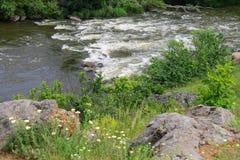 De stroomversnelling op een kleine rivier in de Oekraïne Stock Foto
