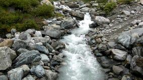 De stroomversnelling op snel bergbergstroom in Alpen, water stroomt over grote witte keien en bel stock videobeelden