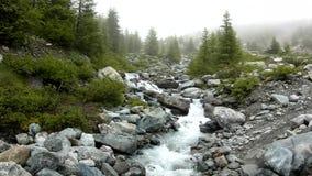 De stroomversnelling op snel bergbergstroom in Alpen, water stroomt over grote witte keien en bel stock video