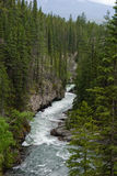 De stroomversnelling van de rivier stock afbeeldingen