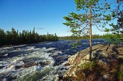De stroomversnelling van de rivier. Stock Afbeelding