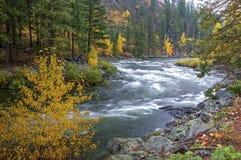 De stroomversnelling van de Wenatcheerivier Stock Foto's