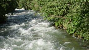 De stroomwater die van Zillertalalpen over rotsen stromen Tirol Oostenrijk stock videobeelden