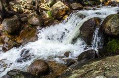 De stroomwaterval van de berg Stock Afbeelding