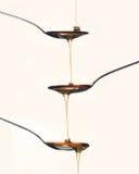 De stroop/de honing giet van lepel aan lepel Stock Foto
