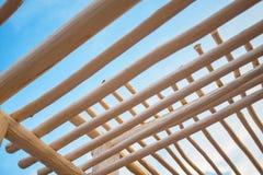 De Structuur van de boomstamluifel stock fotografie