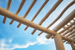 De Structuur van de boomstamluifel royalty-vrije stock foto's