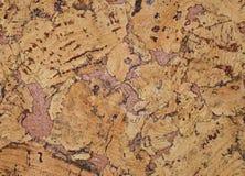 De structuur van cork bekledingen Stock Afbeelding