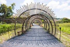 De structuur van de bamboetunnel in tuin Royalty-vrije Stock Foto's