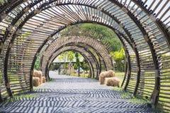 De structuur van de bamboetunnel in tuin Stock Afbeeldingen