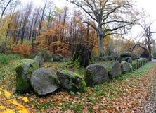 De structuur van de bronstijdbegrafenis, Zeeland, Denemarken Stock Foto's