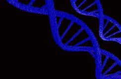 De structuur van DNA Stock Foto's