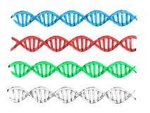 De structuur van DNA Royalty-vrije Stock Afbeeldingen