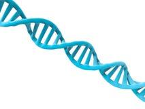 De structuur van DNA Stock Afbeelding