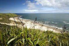 De kuststrand van het westen, het Eiland van het Noorden, Nieuw Zeeland Royalty-vrije Stock Fotografie