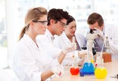 De studenten van de wetenschap in een laboratorium Stock Foto's
