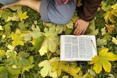 De Studie van de bijbel Stock Fotografie