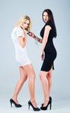 De studiomanier schoot: de concurrentie van twee mooie vrouwen (blonde en brunette) Stock Afbeeldingen