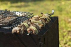De stukken van vlees op vleespennen worden geroosterd op de grill Stock Fotografie