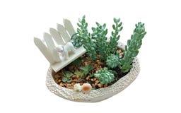 De succulente installaties met hondstuk speelgoed decoratie op kleine pot isoleren Royalty-vrije Stock Fotografie