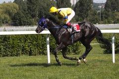 De sultan van het zwaard bij de Grand Prix van Juni in Praag Stock Fotografie