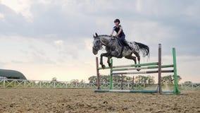 De super langzame motie van een vrouwenjockey springt over de barrières op een paard stock videobeelden