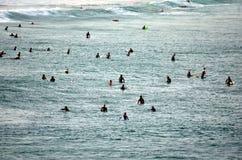 De surfers zitten op brandingsraad, wachten op grote oceaangolf Stock Afbeelding