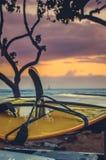 De Surfplank van Hawaï bij Zonsondergang royalty-vrije stock foto